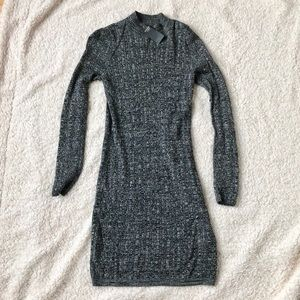 Fitted Sweater Dress - NWT!